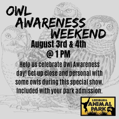 Owl Awareness Weekend