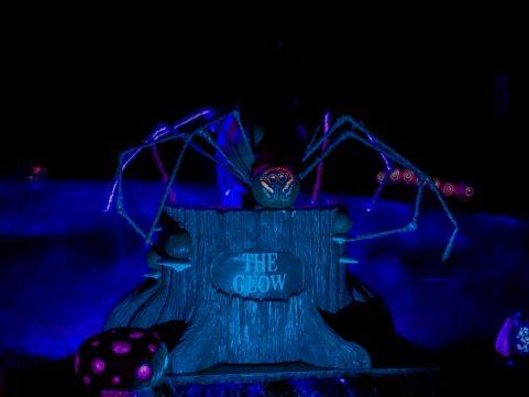 GLOW Spider