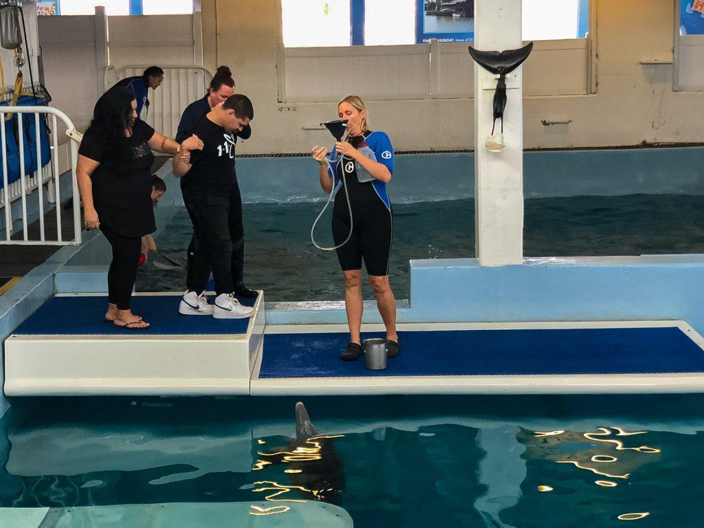 Winter inspires dolphin encounter