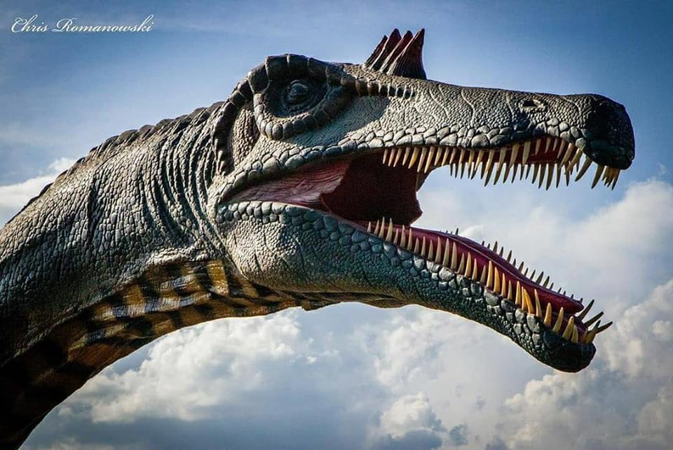 Jurassic Quest Drive-Thru DC