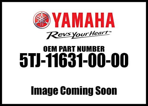 Yamaha OEM Part 1DX-2174G-20-00