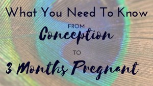 Whatyou need to know from conception to 3 months pregnant (2)