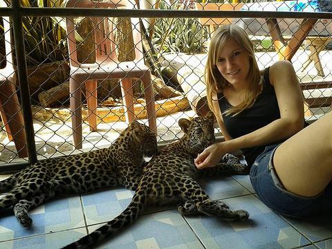 Safari Park Thailand