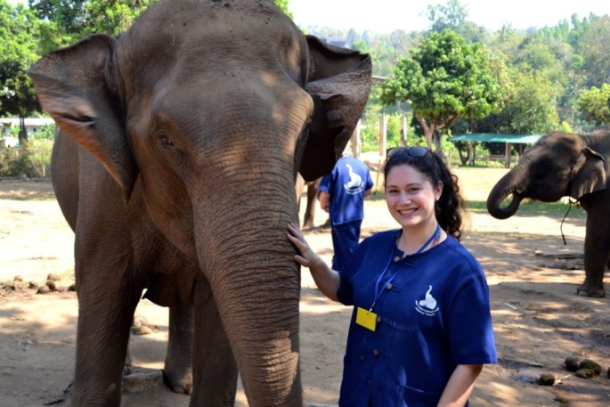 Baanchang Elephant Park: Sanctuary or Prison?