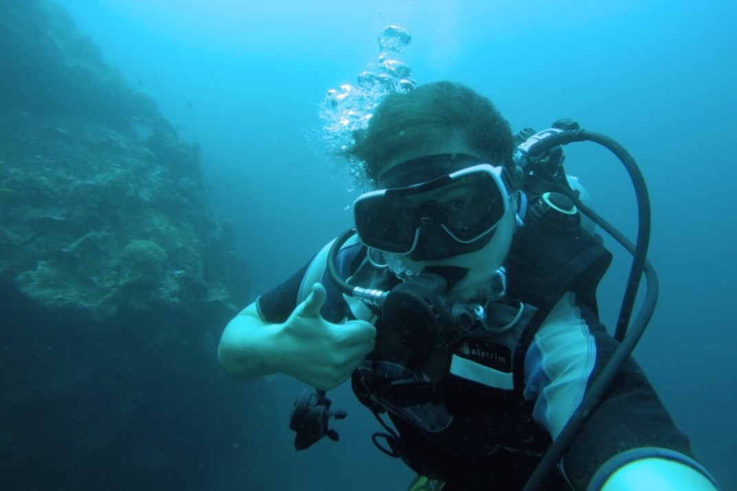You can dive with sharks in the Philippines!