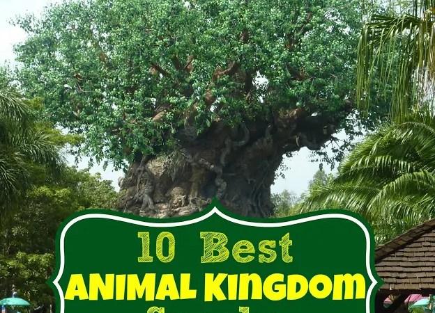 10 Best Animal Kingdom Snacks