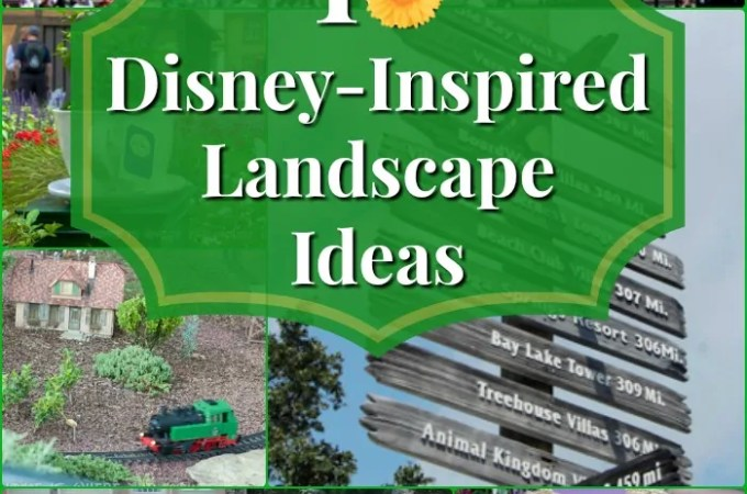 My Yard Goes Disney | 10 Inspiring Landscaping Ideas