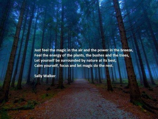 inspiration, nature