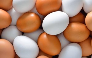 Egg Cleansing