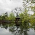 Jade Lake, Chateau Montelena @PennySadler 2014