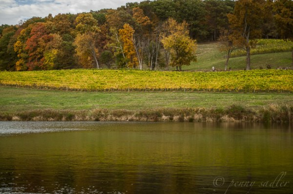 A trip to the Dutchess County Wine Trail