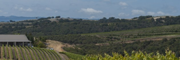Off The Beaten Path in Paso Robles – California's New Wine Country
