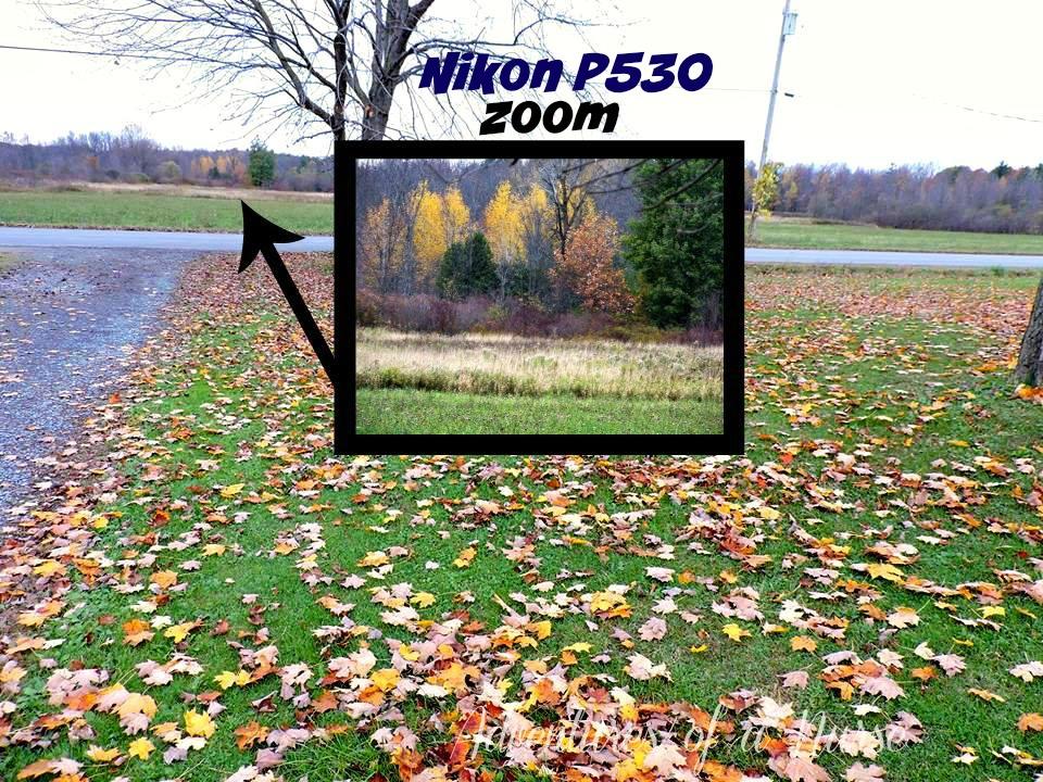 nikonp360