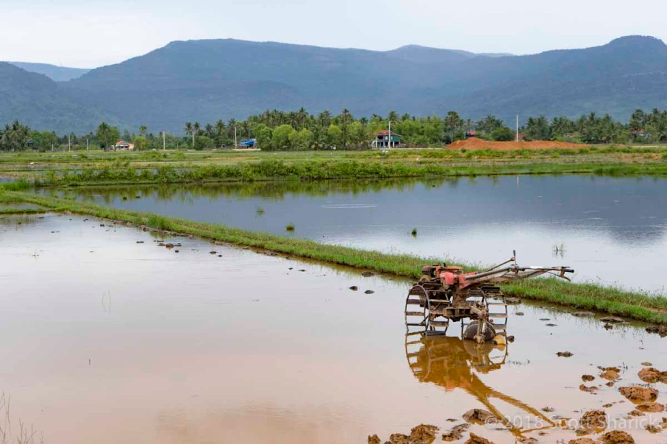 Water filled farmland with a basic hand tractor with Bokor Mountain in the distance. Strokes to Spokes bicycle ride