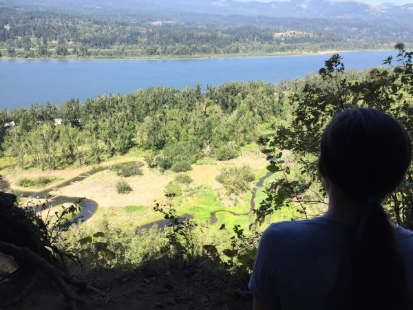An AMAZINGLY stunning view from up a mountain on horsetail falls trail in portland oregon