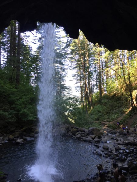 under horsetail falls in portland