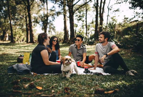Couples date doesn't have to just be couples! Take your dog along and go for a walk in the park. After enjoy a picnic in the park with friends.