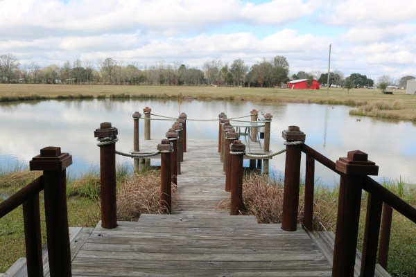 A fantastic view from Cajun Acres Log Cabin in Arnaudville, LA. A cozy quaint cabin available on Airbnb to escape the hustle and bustle of city life. See my experience of this airbnb cabin at adventuresofb2.com
