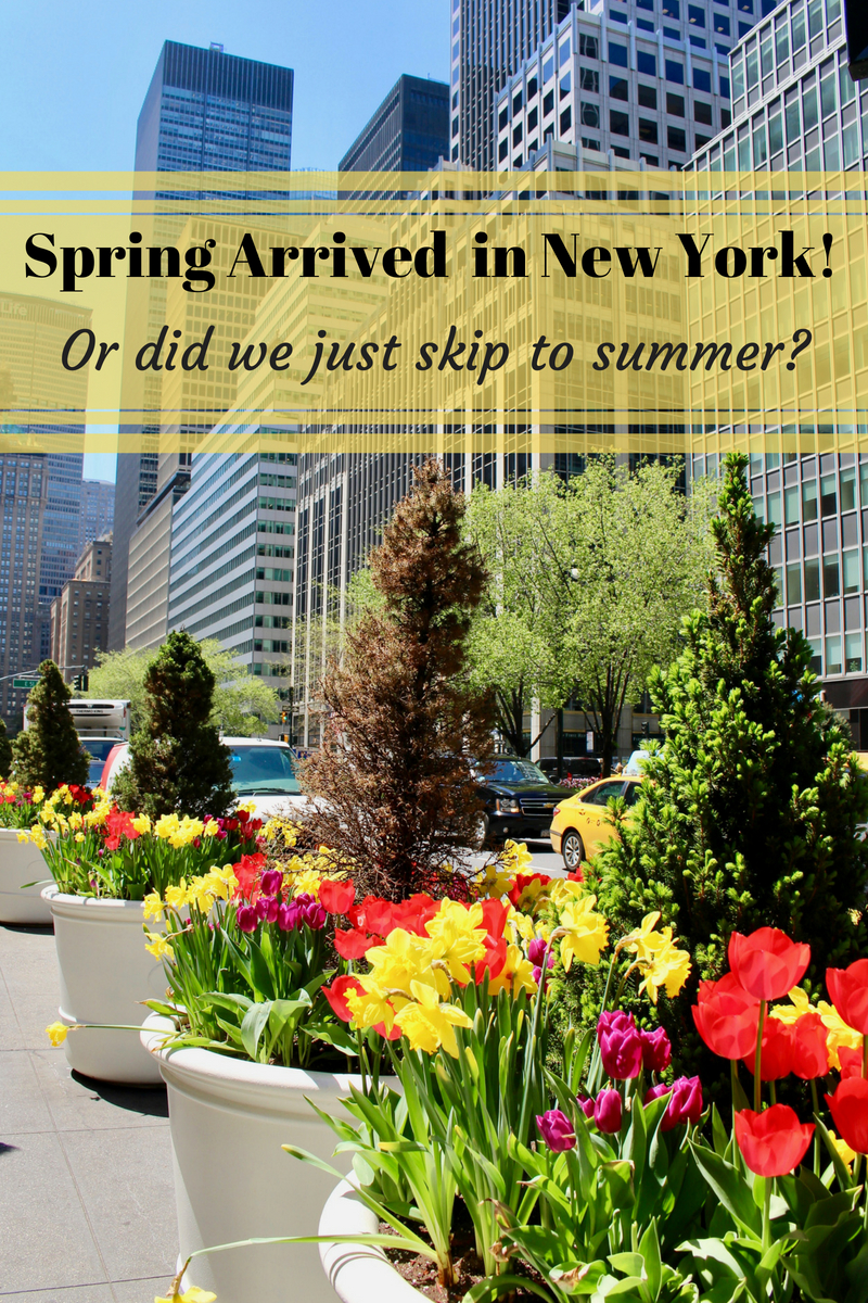The Arrival of Spring in New York – Or did we just skip straight to Summer?