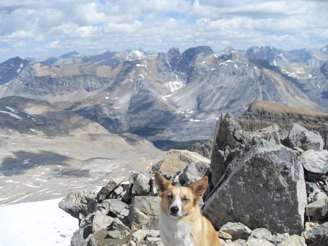 Lupe on the true summit of Cirque Peak and the view to the E.