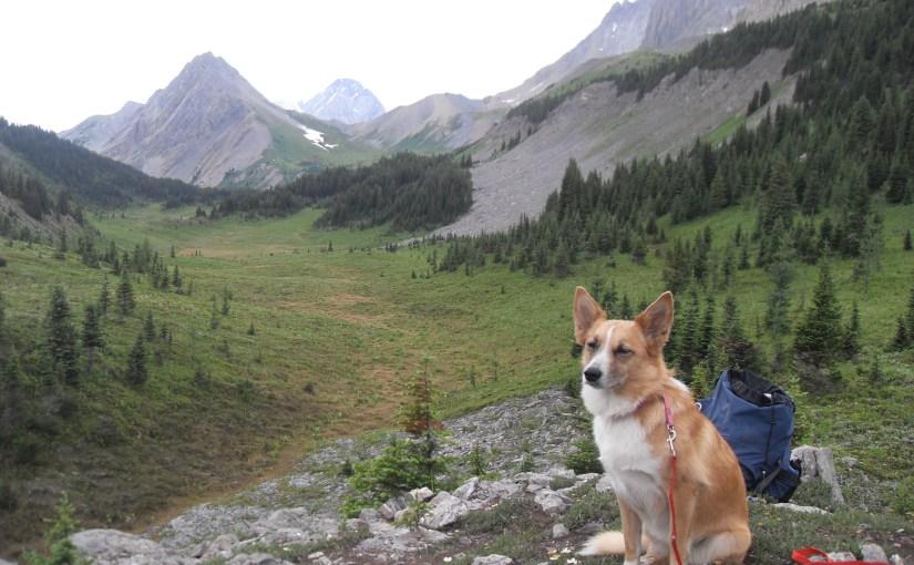 Three Isle Lake & South Kananaskis Pass, Peter Lougheed Provincial Park, Alberta, Canada (7-20-14)
