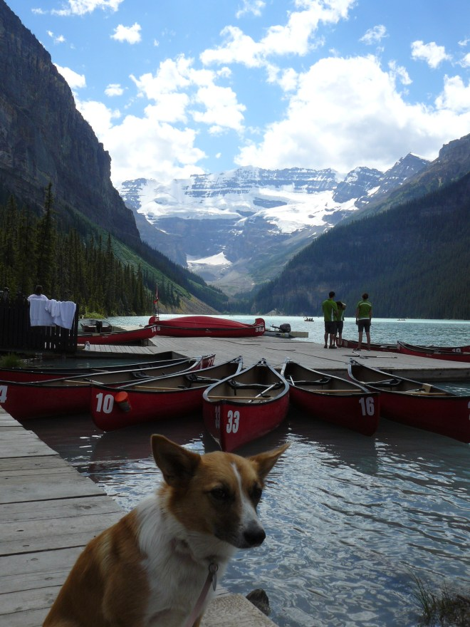 Lupe first reached Lake Louise near the boathouse where they rent out canoes.
