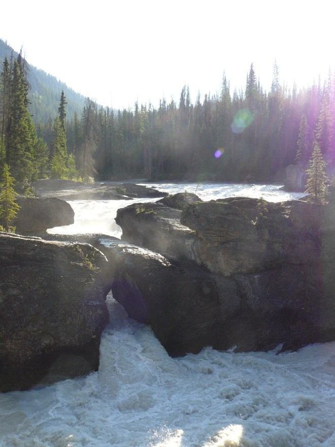 The Natural Bridge over the Kicking Horse River is a little over a km off Trans-Canada Hwy No. 1 along Emerald Lake Road.