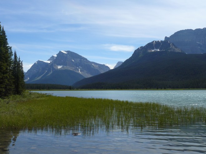 Looking S from the southernmost of the 2 largest Waterfowl Lakes.