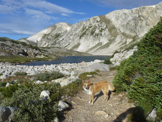 Looking SW towards Medicine Bow Peak from the Gap Lakes Trail near South Gap Lake.
