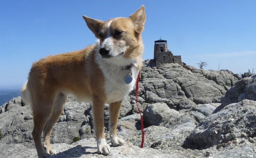 Black Hills, SD Expedition No. 137 – Harney Peak & Little Devils Tower (9-7-15)