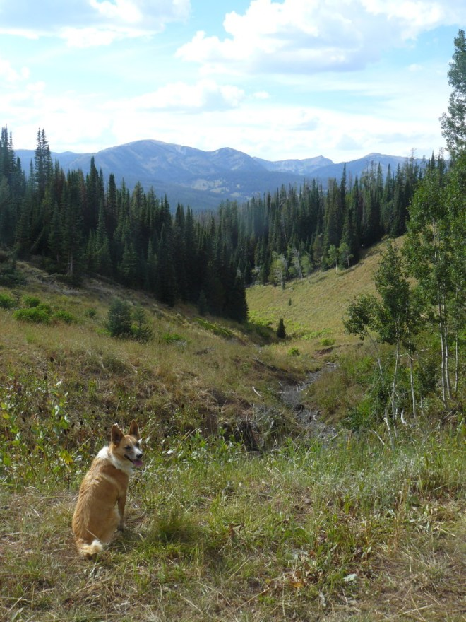 Lupe starts her climb up Wyoming Peak. This photo looks W from near the trail.