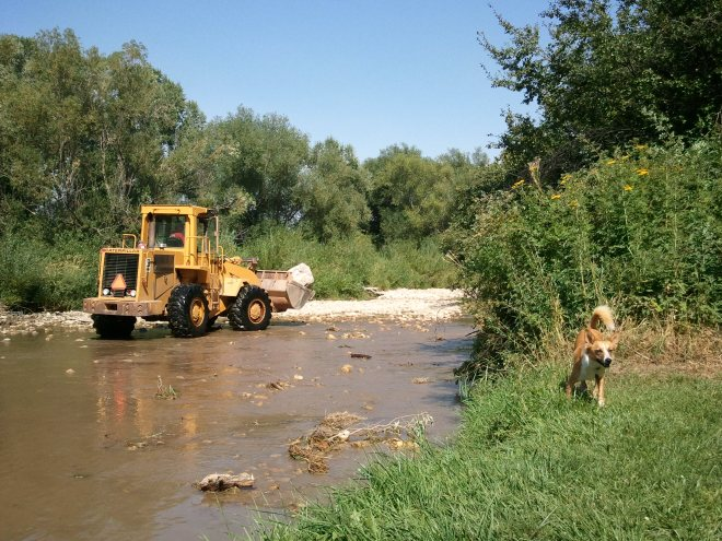 A front end loader moving boulders around in the Tongue River attended Lupe's picnic in Dayton, WY.