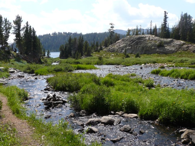 The stream N of Beauty Lake. Photo looks S.
