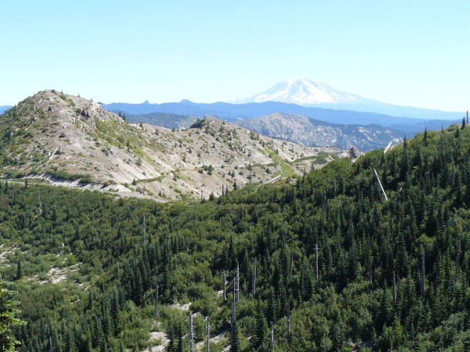 Mt. Adams, seen here, is 34 miles E of Mt. St. Helens. Mt. Hood is 60 miles SSE. Lupe could see Mt. Hood, but it was too far away to show up well in a photograph under the prevailing light conditions while Lupe was near Mt. St. Helens.