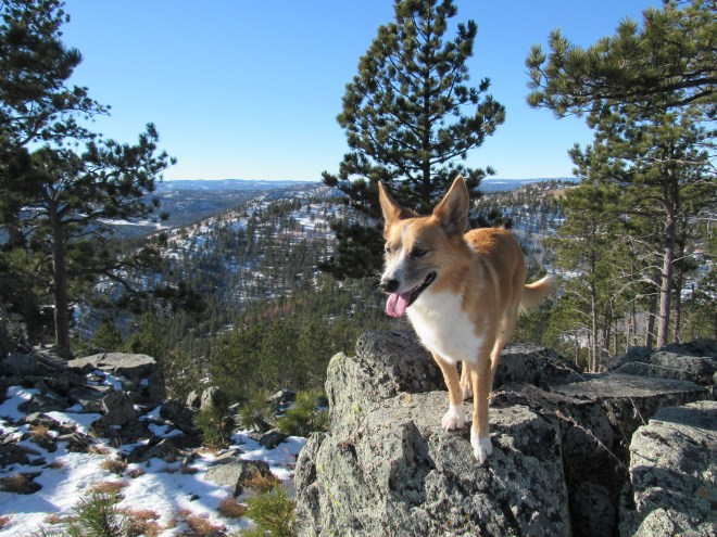 Lupe on the summit of New Year's Eve Peak. This was her 3rd time on the mountain. Photo looks W.