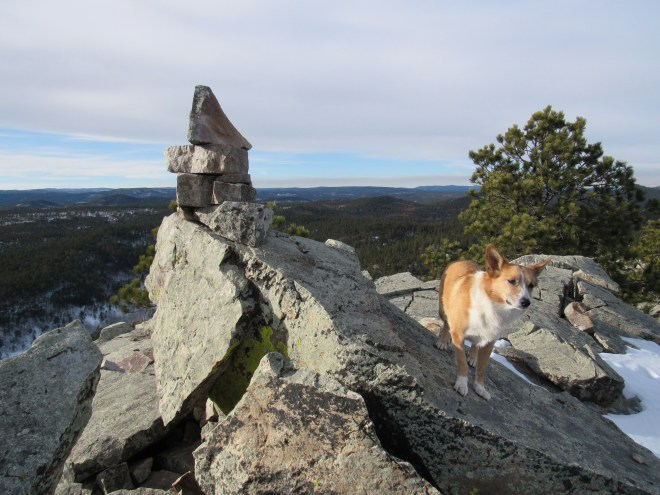 Lupe reaches the summit cairn on Buck Mountain! Photo looks N.