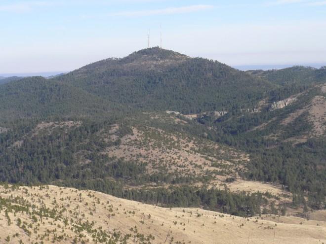 Mt. Coolidge from Daisy Peak.