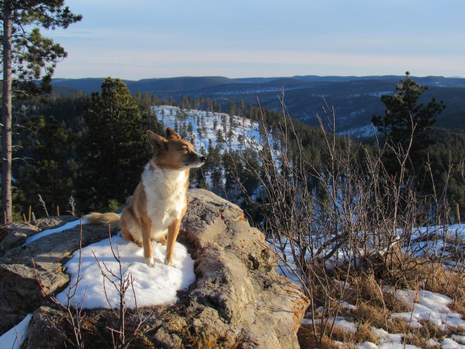 Lupe on the true summit rock. Photo looks S, the direction of the most wide open views.