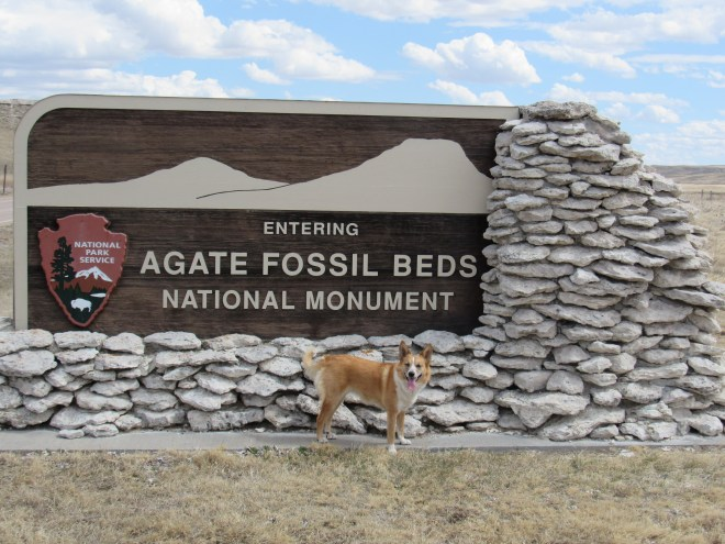 Lupe reaches Agate Fossil Beds National Monument in NW Nebraska.