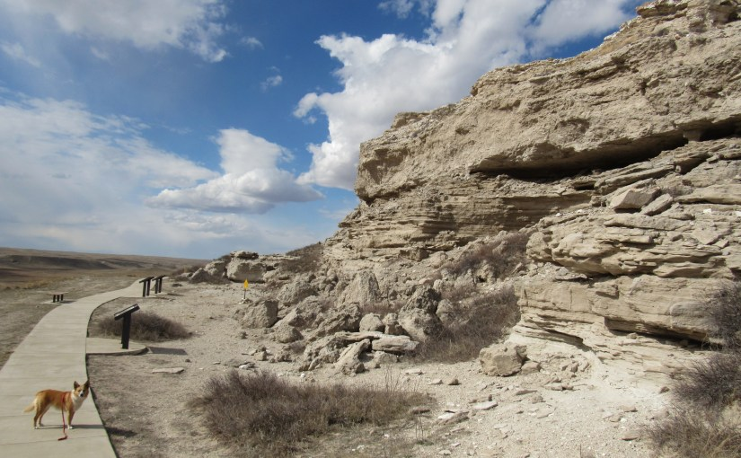 Agate Fossil Beds National Monument & the Soldier Creek Wilderness High Point, Nebraska (4-3-16)