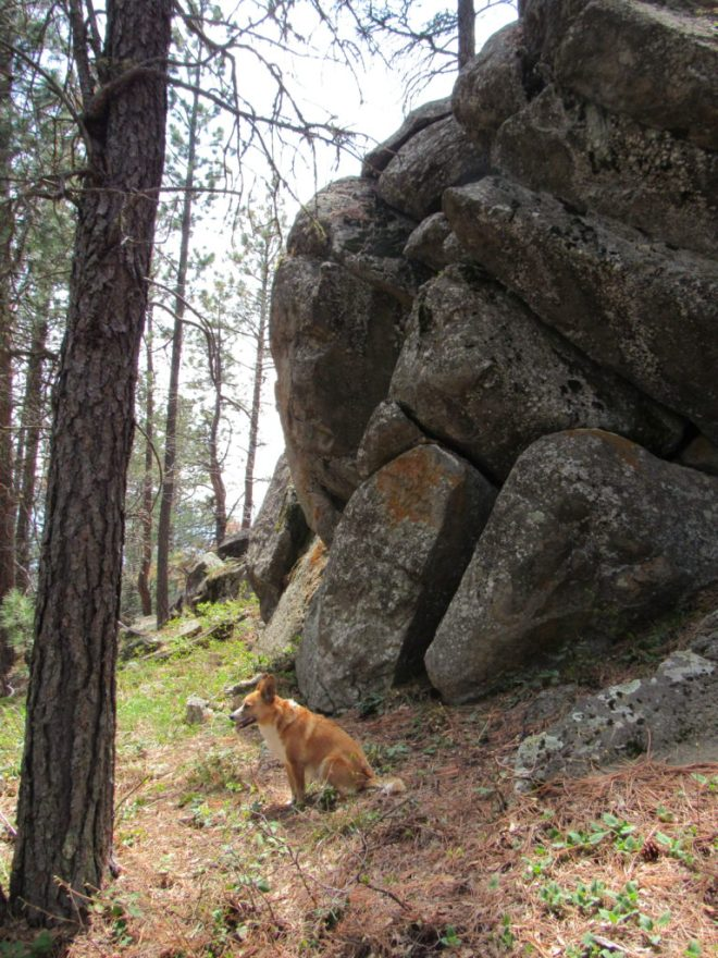 Lupe near some of the rock formations she passed by on her way down the E side of Little Crow Peak. Photo looks S.