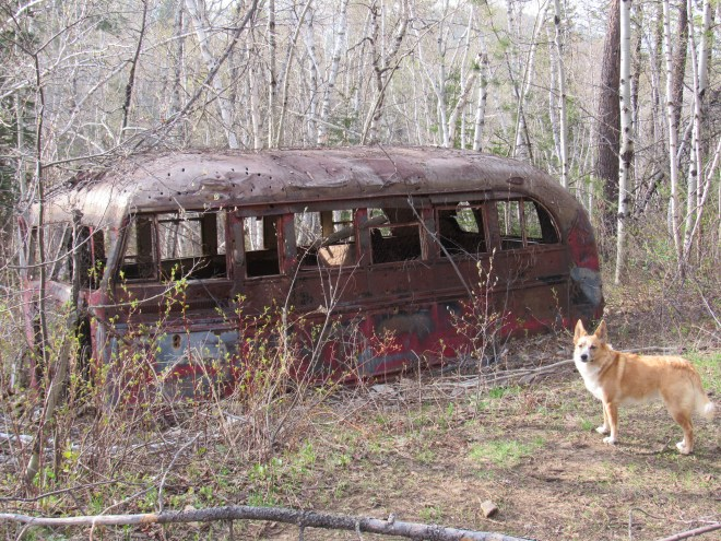The ancient decaying bus about 0.67 mile ESE of Little Crow Peak. Lupe thought this was a stupendous Lupe Treasure, but SPHP was too weak to cart it back to the G6 to secure her prize. This photo was taken later in the day on Lupe's return from Spearfish Peak. Photo looks NW.