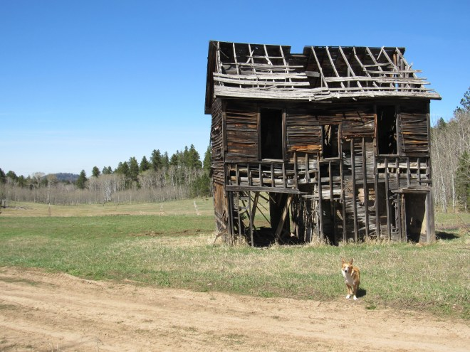 A forlorn old building at Preston, SE of Ragged Top Mountain. Photo looks N.