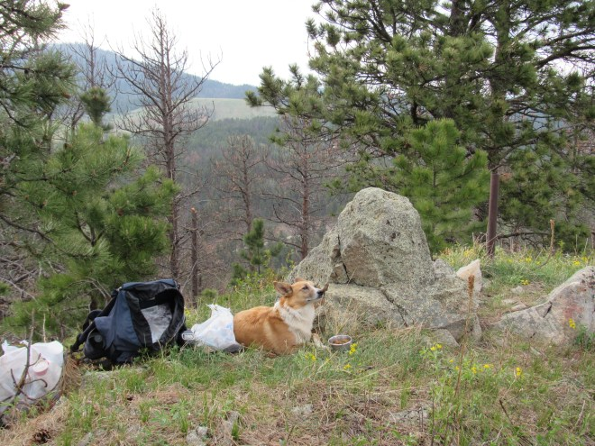 Lupe relaxes on her 2nd ascent of Sugarloaf Mountain. Photo looks N.