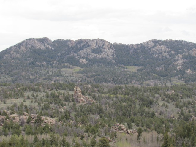 Looking NE toward Twin Mountain (8,831 ft.) and the Sherman Benchmark from Poland Hill.