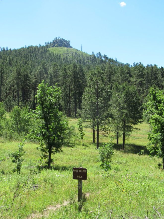 Boulder Hill from USFS Road No. 358 (Boulder Hill Road) where Flume Trail No. 50 crosses the road. Photo looks S.