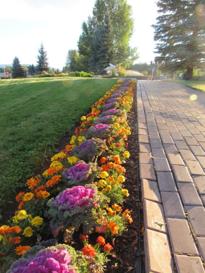 It must take an enourmous amount of work to keep Steelhead Park looking so immaculately manicured. The entire park was in tip top shape!