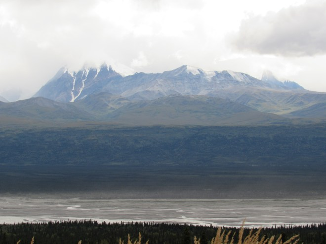 Looking W from the Richardson Highway N of Glennallen.