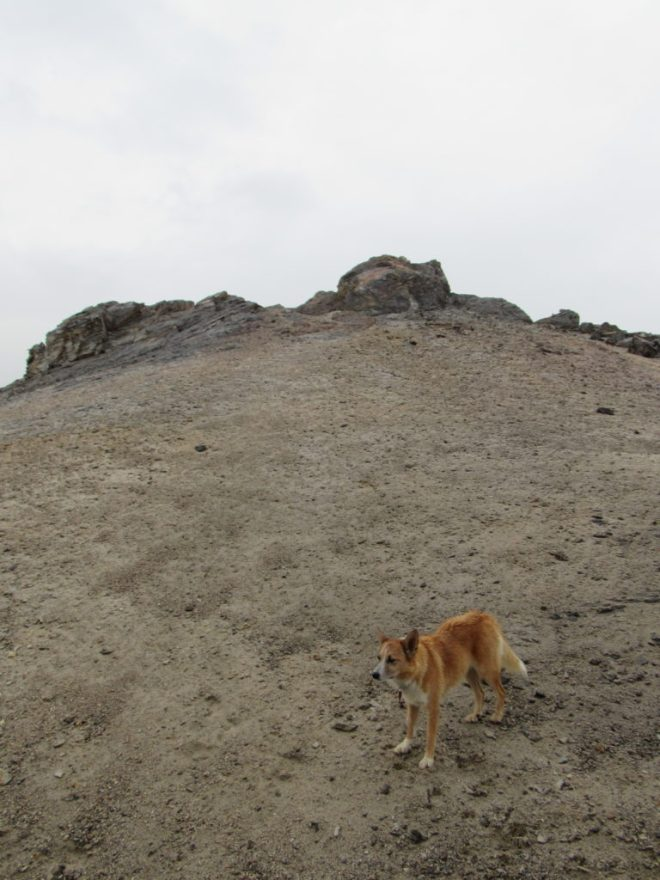 Lupe on the final, short sandy slope to the summit. Photo looks W.