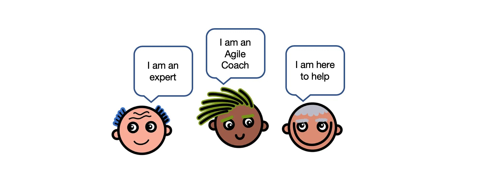 Agile Coach Styles